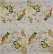 "Colourful Birds Yellow Cream 3-ply 20 Paper Napkins Serviettes 13""x13""–33x33c"
