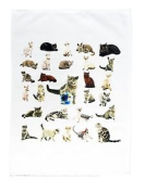 The Cat Collection Large Cotton Tea Towel By Half A Donkey