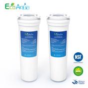 2 X Ecoaqua 67003662 Ice & Water Fridge Filter To Fit Amana R0185011 / R0185014