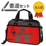 Calligraphy sets / calligraphy set Ladybird (school girl) calligraphy set Ladybird AF50-LB