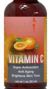 Vitamin C E Ferulic & Hyaluronic Acid Serum POTENT Anti-Ageing, Antioxidant & Brightening 17% L-Ascorbic Acid