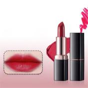 Lipsticks Red Moisturising Pumpkin Balm Lip Fashion Women Gril Beauty Makeup by Molie