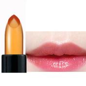 Sexy Lipstick,Fheaven Waterproof Jelly Lipstick Colour Change Lip Gloss Moisturiser Makeup Tool