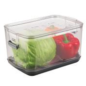 Progressive International Pks-900 Prepworks Progressive Large Produce Keeper, Clear