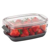 Progressive International Pks-910 Prepworks Progressive Berry Keeper, Clear