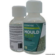 Mouldwyse Paint Additive - Anti Mould Solution & Prevention