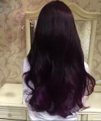 AILOVEDIS 120ml Lavender Purple Semi Permanent Hair Colour Dye Long Lasting Unisex Hair Dye