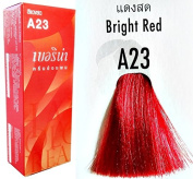 BERINA A23 PERMANENT HAIR DYE colour CREAM RED COOL HOT CRAZY FASHIONS PUNK STYLE