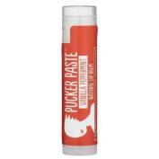 Primal Pit Paste - Vanilla Peppermint Lip Balm