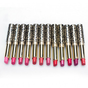 Fenleo 12pcs/lot Lipsticks Lip Stain Makeup Lot Leopard Moisturising Lip Stick
