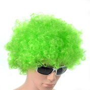 Green Curly Afro Wig Fancy Dress Party Costume Accessory Disco Clown Unisex 70s