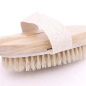Sichun Luxury Body Brush Fantastic Dry Brush or Bath Brush for Cellulite Reduction Skin Exfoliation Bath Body Brushes 100% Natural Bristle