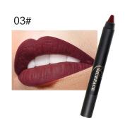 Toamen Ladies Waterproof Beauty Makeup Sexy Pen, Hydrating Long Lasting Lip Gloss Pen
