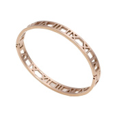 Baoli Rose Gold Plated Titanium Roman Numerals Bangle Bracelet for Women