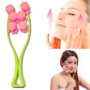 Facial Massager Careshine Face Up Roller Cellulite Top Quality Fast Delivery