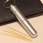 Portable Toothpick Box/stainless Steel Pocket Toothpick Holder Silver