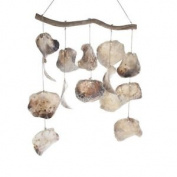 "'mobile ""placuna Shell, 50 Cm, Natural"