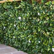 Urban 10 Witchhedge Uv Stabilised Pvc Expandable Artificial Hedging - Summer