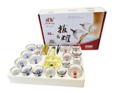 Hq 18 Pcs Vakuum Cupping Set With Magnetic Heads Incl. Joint Cups / Acupunkture