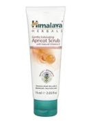 Himalaya Herbals Gentle Exfoliating Apricot Scrub - 75ml