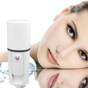 Handheld Mist Sprayer Facial Body Nebulizer Steamer Face Beauty Instrument Rs