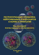 The Restructurization of the Chromatin of Neutrophilic Granulocytes in Norm and Pathology [RUS]