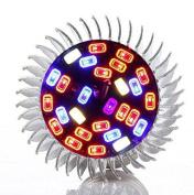 Led Grow Light Bulb   28 W   Full Spectrum   Plant Light   High Efficiency