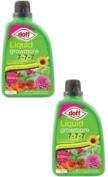 Doff Liquid Growmore Vegtable & Flowers Fertlizer Feed 2 X 1 Litre