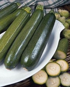 Vegetable Courgette Green Bush 55 Finest Seeds