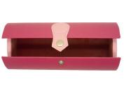 Ladies Hard Pink Satchel Glasses Case Press Stud Protective Lining Idea