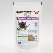 Milk Thistle Seeds Powder, Nasiona Ostropestu Mielone Ol'vita 200g