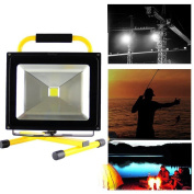 Nestling®50w Led Flood Light Lamp, Hand Rechargerable Floodlight, Landscape
