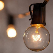 7.6m Weatherproof Globe String Festoon Lights With 25 Clear Bulbs G40, Indoor/