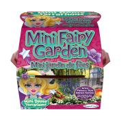 Dunecraft 28074 Fairy Garden Mini Dome Terrarium Allows You To Grow Plants Under