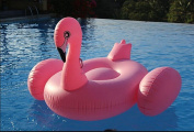Giant Inflatable Ride-able Flamingo