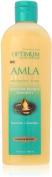 Optimum Salon Haircare Amla Legend Moisture Remedy Shampoo 400ml