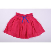 Richie House Little Girls Magenta Purple Accents Tulle Skirt 2-6