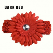 Dark Red New Fashion Baby Girl Woman Crochet Headband Hair Band Daisy Flower T279