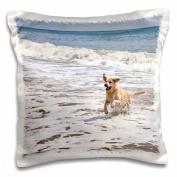 3dRose A Yellow Labrador Retriever dog - NA02 ZMU0155 - Zandria Muench Beraldo, Pillow Case, 41cm by 41cm