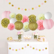 17Pcs Tissue Paper Pom Poms Flowers Kit + Paper Lanterns+ Hanging Star paper Garland + Honeycomb Balls for Wedding Party Decoration Birthday Kids Bridal Shower Baby Shower by Litaus
