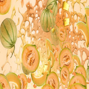 MELON SPLASH FRAGRANCE OIL - 60ml - FOR CANDLE & SOAP MAKING BY VIRGINIA CANDLE SUPPLY - FREE S & H IN USA