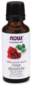 NOW Rose Absolute Oil, 30 mL