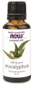NOW Eucalyptus Oil, 30 mL