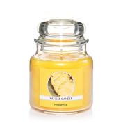Yankee Candle Pineapple Medium Jar Candle