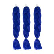 CXYP 60cm Synthetic Braiding Hair 3pcs/lot Afro Jumbo Braiding Hair Extensions 100g/pc Kanekalon Fibre for Twist Braiding Hair