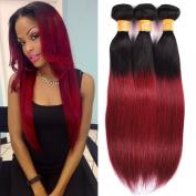 Ombre Two Tone 1b/burg Colour Straight Virgin Indian Hair Weave 100% Human Hair Extensions 3 Bundles/300g