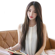 YAMEIJIA Synthetic Women Wig Korean Style Straight Heat Resistant Hair Wigs