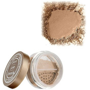 PLAIN JANE BEAUTY I AM marvellous (#11) GET LOOSE POWDER FOUNDATION
