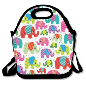 Colourful India Elephant Lunch Bag Adjustable Strap