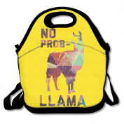 Geometry No Prob-llama Multifunctional Lunch Tote Bag Carry Box